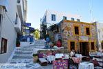 Kos town (Kos-town) | Island of Kos | Greece Photo 51 - Photo JustGreece.com