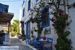 Kos town (Kos-town) | Island of Kos | Greece Photo 54 - Photo JustGreece.com