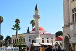 Kos town (Kos-town)   Island of Kos   Greece Photo 67 - Photo JustGreece.com