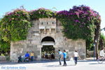 JustGreece.com Kos town (Kos-town) | Island of Kos | Greece Photo 95 - Foto van JustGreece.com