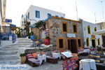 JustGreece.com Kos town (Kos-town) | Island of Kos | Greece Photo 129 - Foto van JustGreece.com