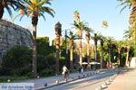 Kos town (Kos-town) | Island of Kos | Greece Photo 138 - Photo JustGreece.com