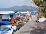 Bootjes at vissersThe harbour of Skala Kalllonis - Foto van JustGreece.com