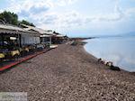 Terraces at the beach of Skala Kallonis - Foto van JustGreece.com