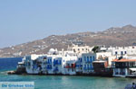 Mykonos town (Chora) | Greece | Greece  Photo 8 - Photo JustGreece.com
