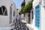 JustGreece.com Mykonos town (Chora) | Greece | Greece  Photo 25 - Foto van JustGreece.com