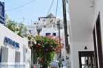 Mykonos town (Chora) | Greece | Greece  Photo 62 - Photo JustGreece.com