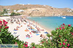 JustGreece.com Super Paradise beach | Mykonos | Greece Photo 18 - Foto van JustGreece.com