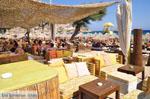 Paradise Beach Mykonos (Kalamopodi) | Greece | Greece  Photo 5 - Photo JustGreece.com