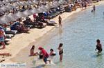 JustGreece.com Platis Gialos Mykonos | Greece | Greece  Photo 7 - Foto van JustGreece.com
