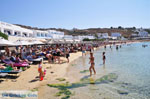 JustGreece.com Platis Gialos Mykonos | Greece | Greece  Photo 13 - Foto van JustGreece.com