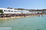 JustGreece.com Platis Gialos Mykonos | Greece | Greece  Photo 16 - Foto van JustGreece.com