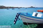 JustGreece.com Platis Gialos Mykonos | Greece | Greece  Photo 21 - Foto van JustGreece.com
