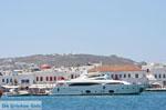 Mykonos The harbour of | Greece | Greece  Photo 3 - Photo JustGreece.com