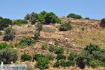 Berglandschap Naxos | Island of Naxos | Greece | Photo 2 - Foto van JustGreece.com