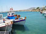 Piso Livadi Paros | Cyclades | Greece Photo 2 - Photo JustGreece.com