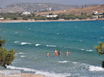 Molos Paros | Greece Photo 17 - Photo JustGreece.com