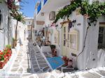JustGreece.com Naoussa Paros | Cyclades | Greece Photo 74 - Foto van JustGreece.com