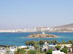 Naoussa Paros | Cyclades | Greece Photo 106 - Photo JustGreece.com