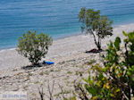 JustGreece.com Een verlaten kiezelbeach near Kampos (Votsalakia)  - Island of Samos - Foto van JustGreece.com