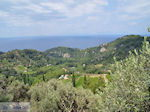 JustGreece.com The groene gebied between Manolates and Agios Konstandinos - Island of Samos - Foto van JustGreece.com
