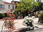 Thassos town - Limenas | Greece | Photo 3 - Photo JustGreece.com