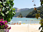 JustGreece.com Makryammos - beach near Limenas (Thassos town) | Photo 2 - Foto van JustGreece.com