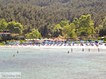 JustGreece.com Makryammos - beach near Limenas (Thassos town) | Photo 18 - Foto van JustGreece.com