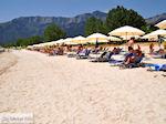 JustGreece.com Golden Beach - Skala Panagia - Chrissi Ammoudia | Thassos | Photo 22 - Foto van JustGreece.com