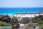 Elafonisi (Elafonissi) Crete - Greece - Photo 86 - Photo JustGreece.com