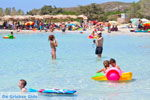 Elafonisi (Elafonissi) Crete - Greece - Photo 93 - Foto van JustGreece.com