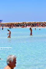 Elafonisi (Elafonissi) Crete - Greece - Photo 94 - Photo JustGreece.com