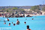 Elafonisi (Elafonissi) Crete - Greece - Photo 100 - Photo JustGreece.com