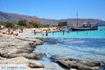 Elafonisi (Elafonissi) Crete - Greece - Photo 136 - Photo JustGreece.com