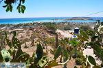 Elafonisi (Elafonissi) Crete - Greece - Photo 165 - Foto van JustGreece.com