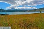 Amfilochia - Prefecture  Aetoloakarnania -  Photo 1 - Photo JustGreece.com
