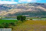 Amfilochia - Prefecture  Aetoloakarnania -  Photo 2 - Photo JustGreece.com