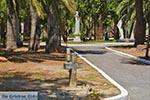 Messolongi - Prefecture  Aetoloakarnania -  Photo 22 - Photo JustGreece.com