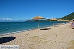Vonitsa - Prefecture  Aetoloakarnania -  Photo 19 - Photo JustGreece.com