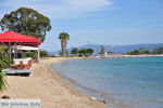 Eretria | Euboea Greece | Greece  - Photo 017 - Photo JustGreece.com