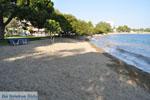 Hotel Negroponte near Eretria | Euboea Greece | Greece  - Photo 004 - Photo JustGreece.com