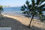JustGreece.com Hotel Negroponte near Eretria | Euboea Greece | Greece  - Photo 005 - Foto van JustGreece.com