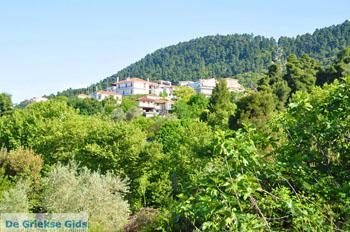 Ellinika North-Euboea | Greece | Greece  Photo 5 - Photo JustGreece.com