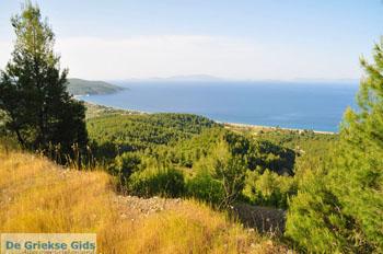 Noordoostkust Euboea   Greece   Photo 1 - Photo JustGreece.com
