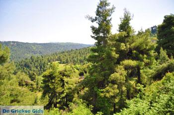 Mooie nature North-Euboea | Greece | Greece  Photo 2 - Photo JustGreece.com