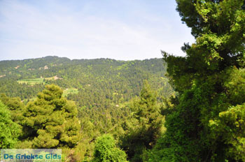 Mooie nature North-Euboea | Greece | Greece  Photo 3 - Photo JustGreece.com