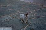 Chora Folegandros - Island of Folegandros - Cyclades - Photo 13 - Foto van JustGreece.com