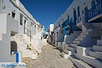 Chora Folegandros - Island of Folegandros - Cyclades - Photo 31 - Photo JustGreece.com
