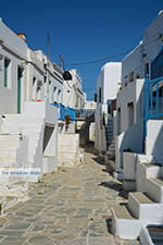 Chora Folegandros - Island of Folegandros - Cyclades - Photo 41 - Photo JustGreece.com