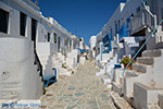 Chora Folegandros - Island of Folegandros - Cyclades - Photo 88 - Photo JustGreece.com